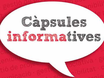 """Maquetació de la publicació """"Càpsules informatives"""""""