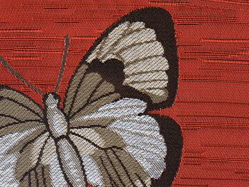 Colección de fulares de mariposas para el Museo del Arte Mayor de la Seda